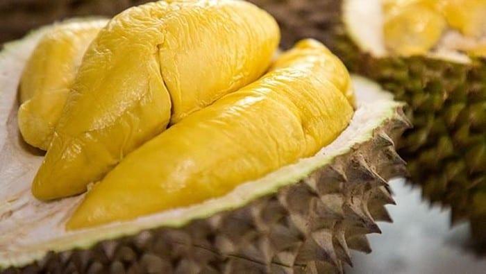 Durian Pasuruan Murah